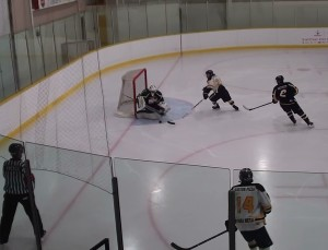 action around PP net
